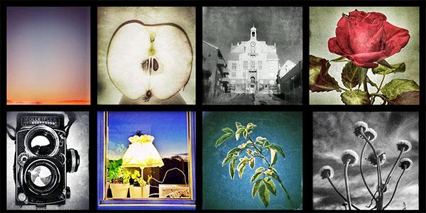 brabilder Fotografi   Utskrifter